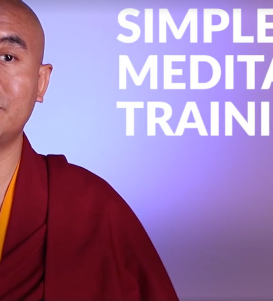 Mingyur Rinpoche – training your monkey mind