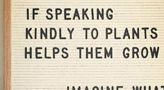 if speaking kindly to plants…